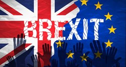 Share Politics: Brexit Battle