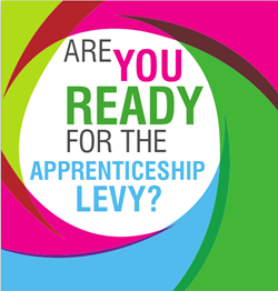 How will the apprenticeship levy affect businesses?