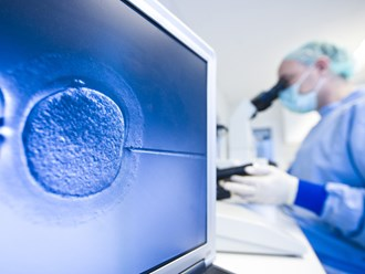 The News Review: IVF offered at no cost in exchange for a donation of half of women's eggs