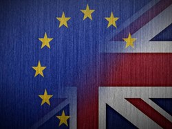 IEA: Should Britain stay in the Customs Union?