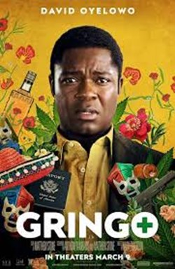 Business of Film: Gringo